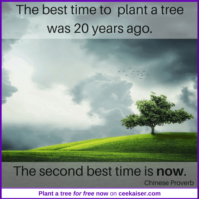 B'n'Tree Best time to plant a tree was 20 years ago. Plant a tree now mene. ceekaiser.com