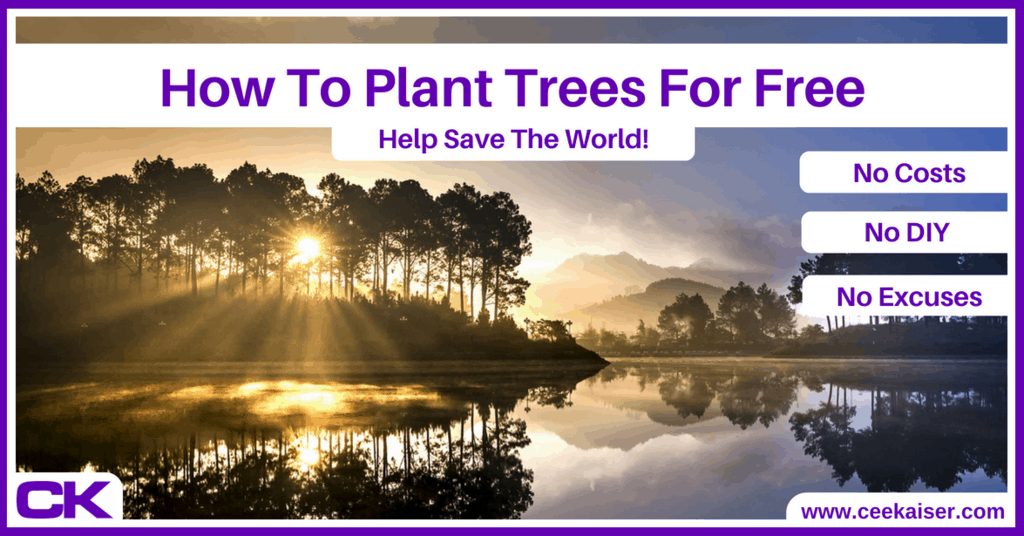 How To Plant Trees For Free – Without Money Nor Effort