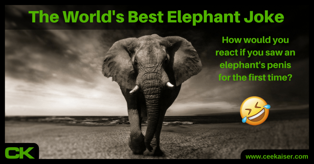 The World's Best Elephant Joke by ceekaiser.com